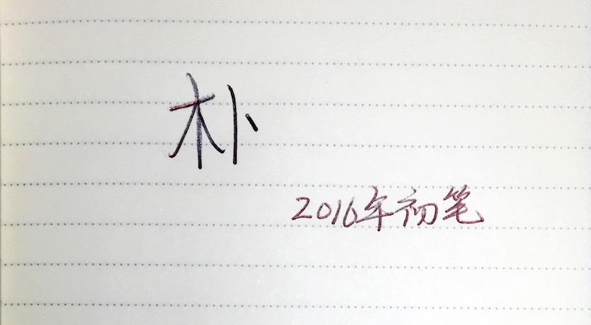 2016年初笔:朴